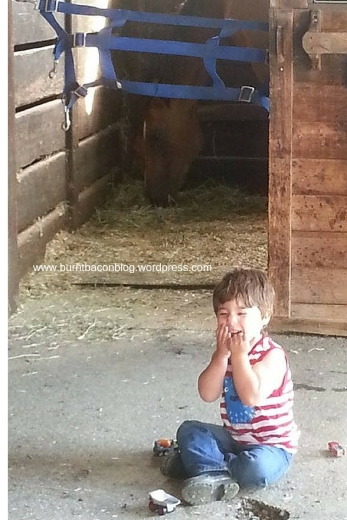 Horses, dirt and toy trucks